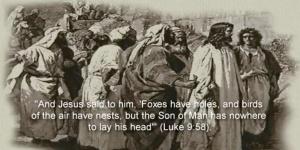 Little God 186